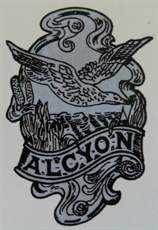 Picture of Alcyon Mudguard