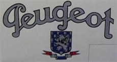 Picture of Peugeot Chaincase