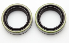 Picture of Fork Oil Seal Kit