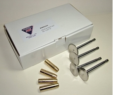Picture of BSA Valve & Guide Set (Wassell)