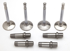 Picture of Valve and Guide Sets