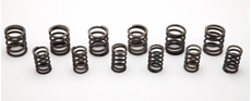 Picture of BSA/Triumph Valve Spring Set